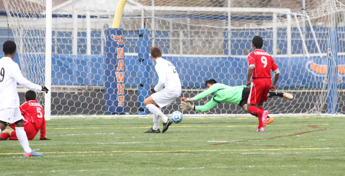 2014 Illinois High School Soccer Coaches Association Boys All-State Team