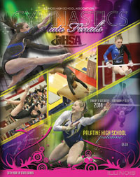 mega gymnastics meet 2015 results for the ihsa
