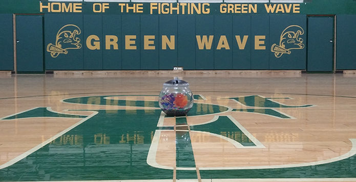 Nigel The Fish, St. Edward Ride (Swim) Green Wave To IHSA Basketball State Finals